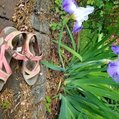 Merrell Azura Featured in Orvis Spring Collection