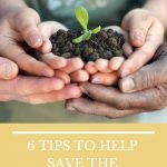 6 TIPS TO HELP SAVE THE ENVIRONMENT