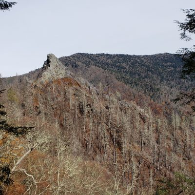 Chimney Top Trail – 2 Years After The Wildfire