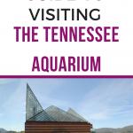 tennessee aquarium guide