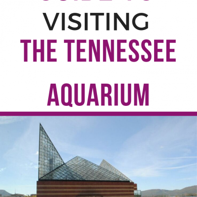 Tennessee Aquarium of Chattanooga