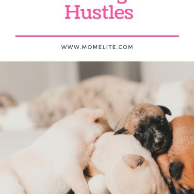 Three of The Most Rewarding Side Hustles