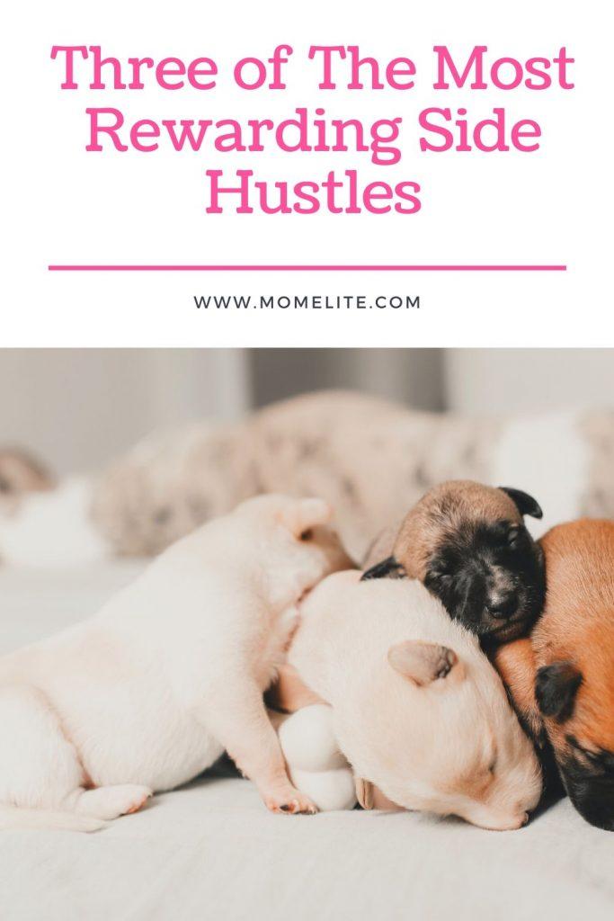 Three of The Most Rewarding Side Hustles