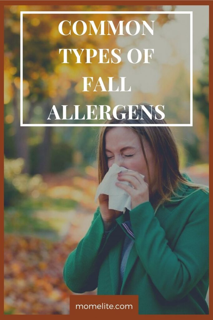COMMON TYPES OF FALL ALLERGENS