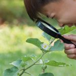 Earthy Love: Tips for Teaching Kids To Love Nature